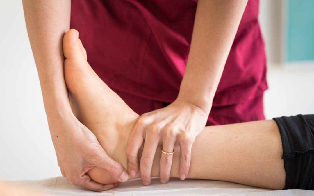 Arto inferiore – Dalla dissezione anatomica al trattamento terapeutico. Osteopatia e fisioterapia: quale ruolo?