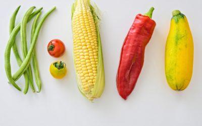 Corso ECM – La Nutrizione secondo la Medicina Energetica (MTC) e applicazioni cliniche